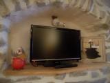 tv-petit-981
