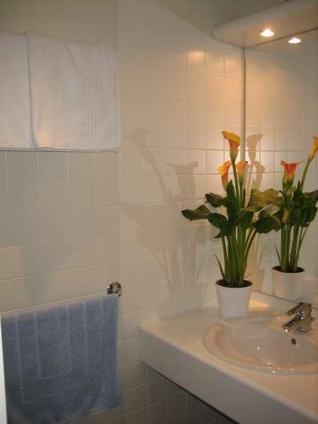 les-loyers-appartement-chalet-salle-de-bain-495